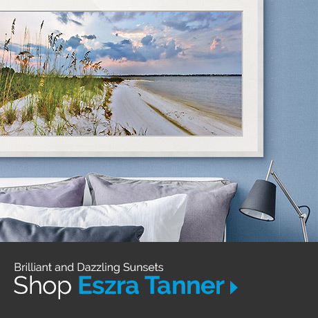 Shop Eszra Tanner art