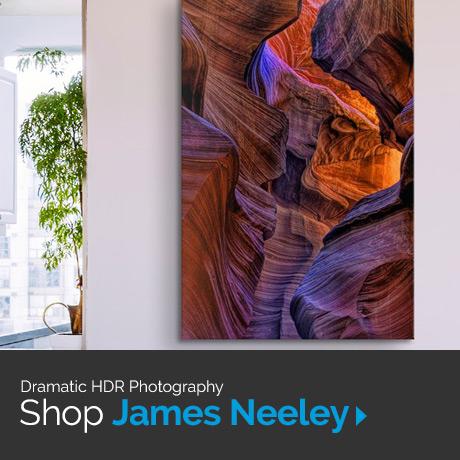 Shop James Neeley art
